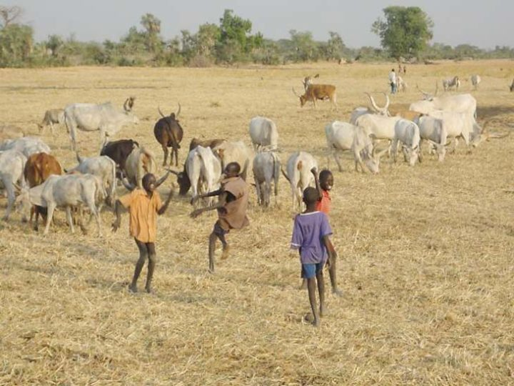 South Sudan's Dinka People and Conflict Reconciliation
